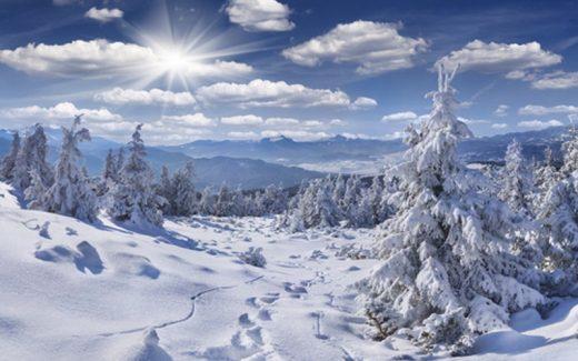 59317-zima-snijeg-scenu-stampanje-fotografija-pozadinu-umjetnost-tkanine-bozic-fotografije-pozadinu-d-6907